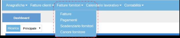 Fatture Fornitore zoom con Canoni