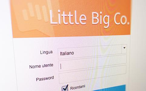 Little big Co. - Login